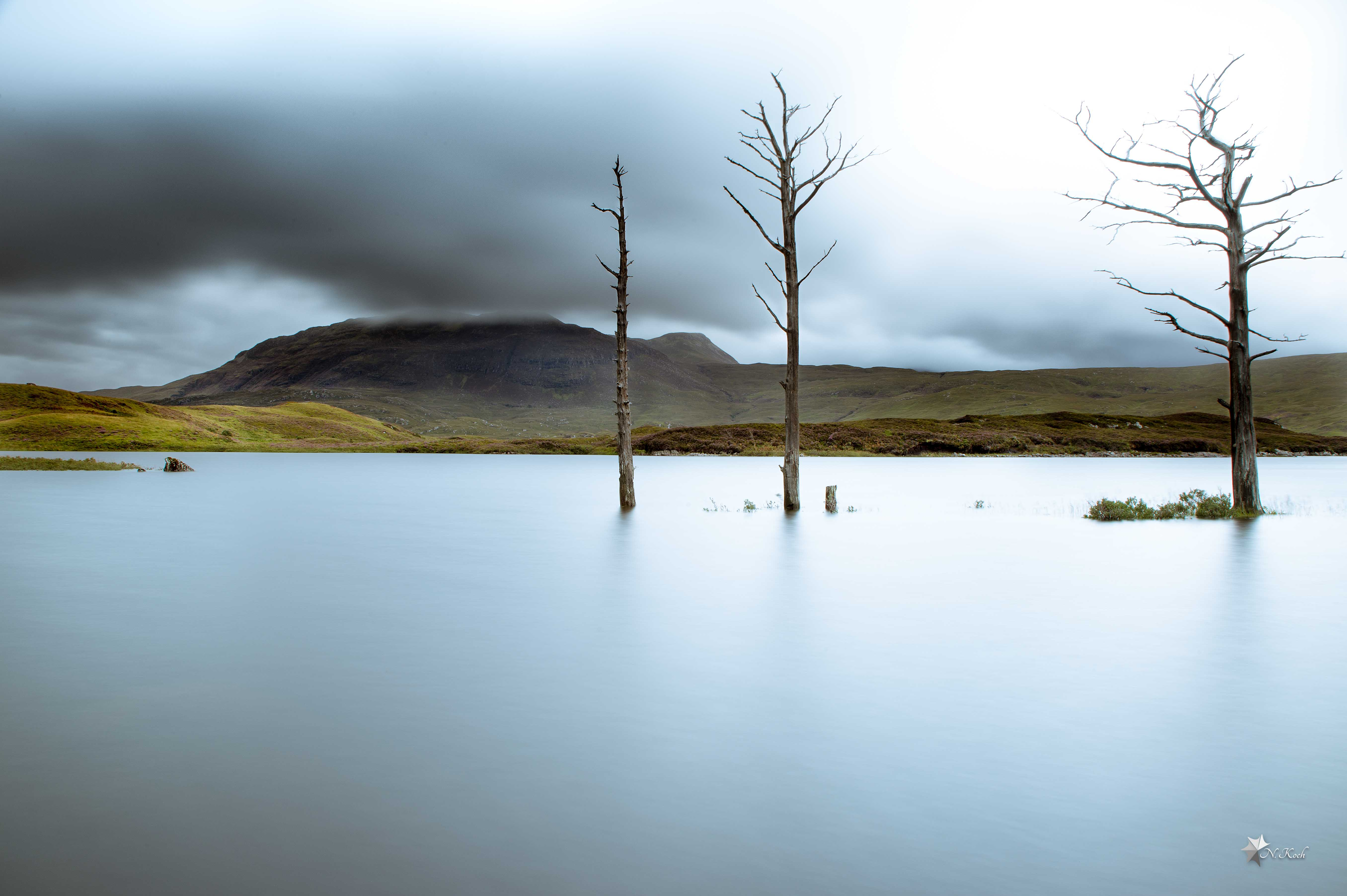 2016, Scotland | In the sign of three - trees