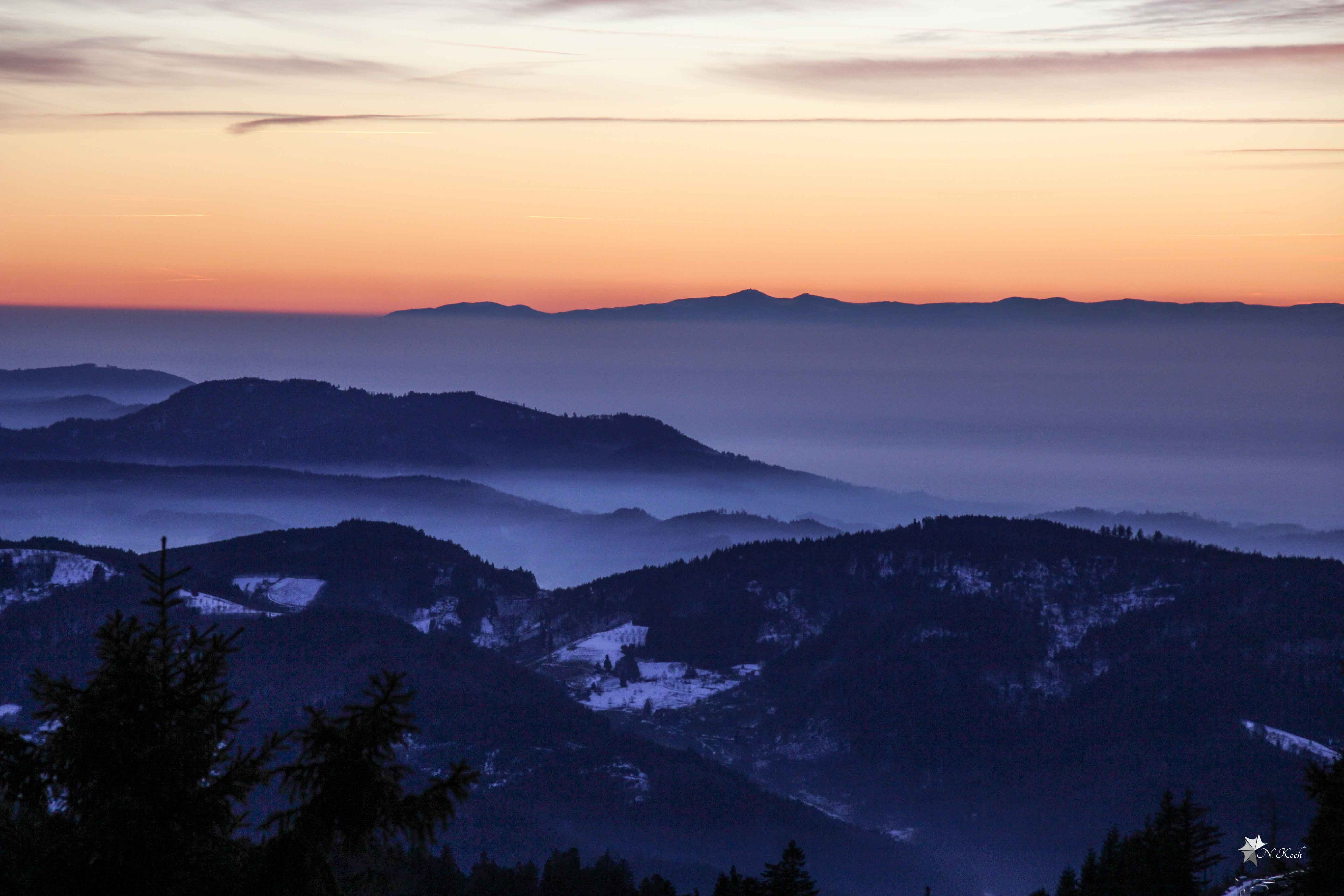 2015, Blackforest | Fog in the valley