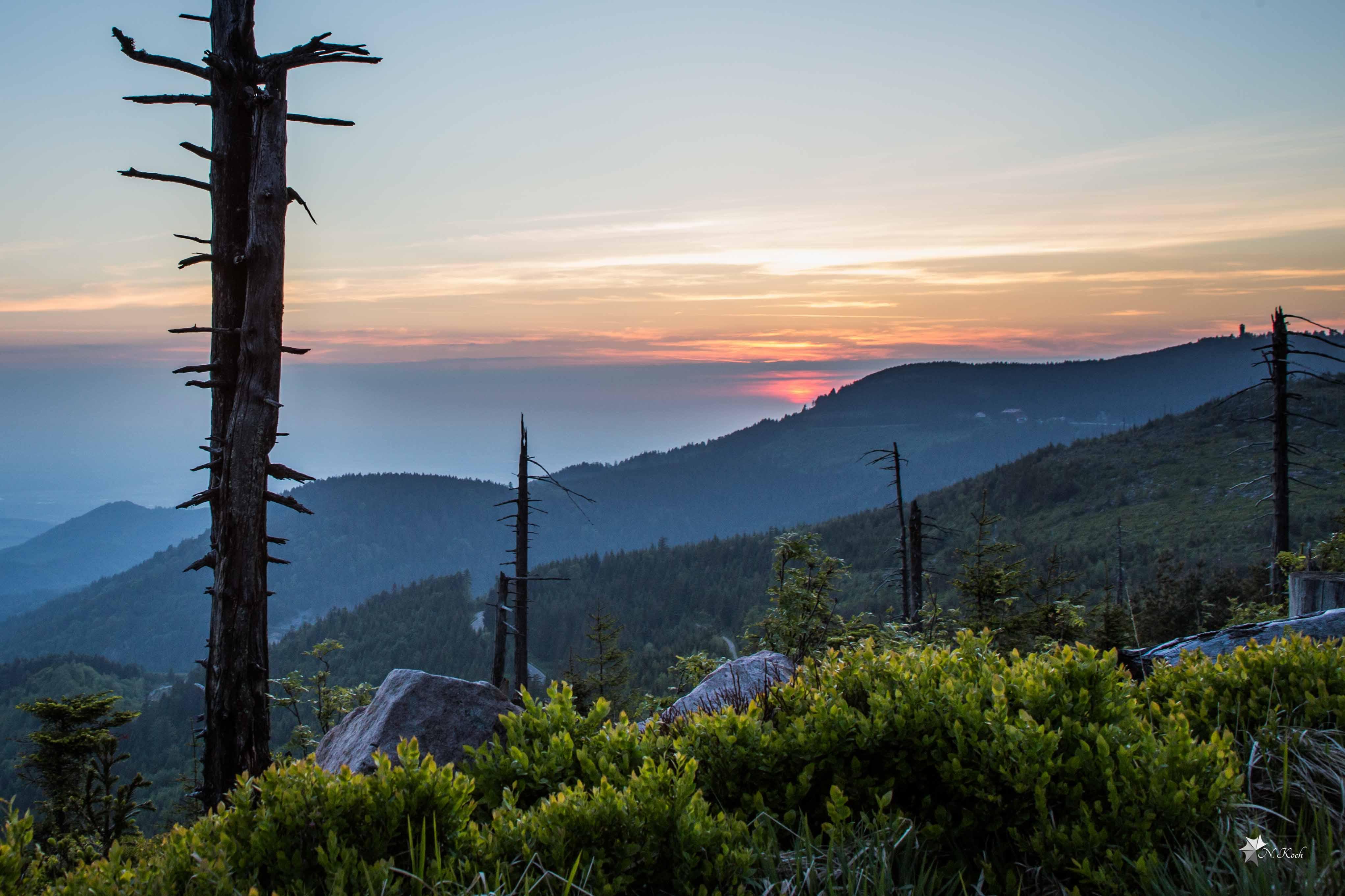 2015, Blackforest | Mountain range at sunset