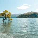 Wandern, Wasser, Wanaka